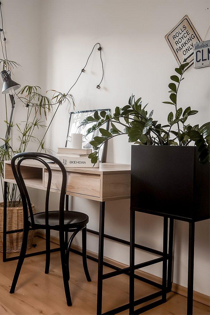 student room decoration, black metal stand for plants, large desk in loft style, vintage bentwood chair, plants in student room, loft style student room